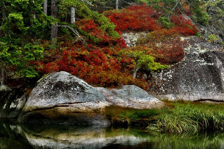 Fall colors while Maine hiking.