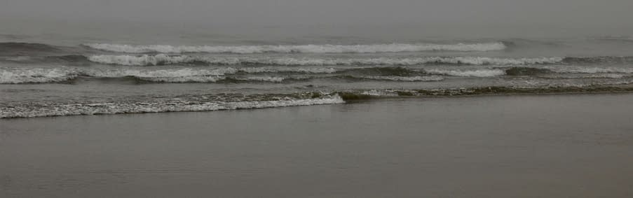 The surf.