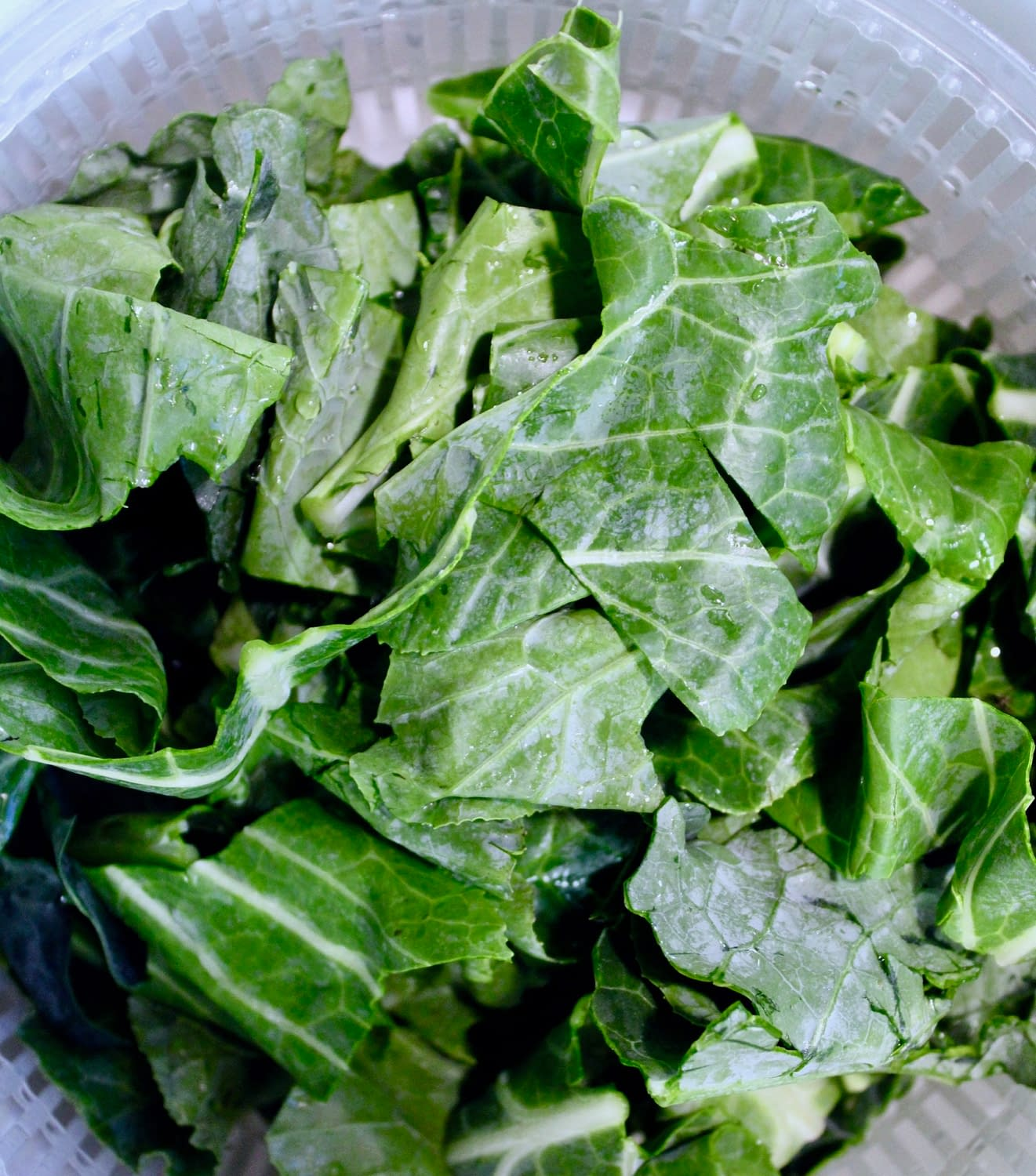 Collared Greens in the salad spinner.